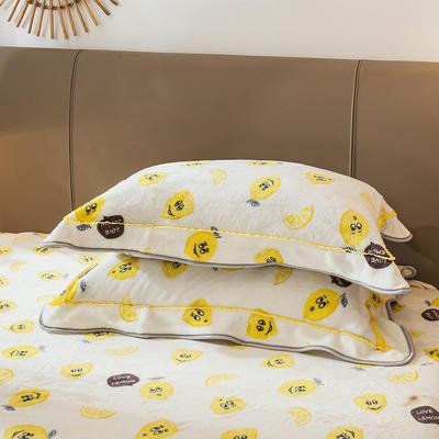 2019新款法兰绒金貂绒单品枕套 48cmX74cm/对 柠檬