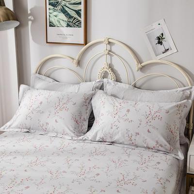 2020年新款-全棉印花单枕套 48cmX74cm/对 安娜-兰
