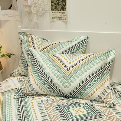2021新款-13372全棉印花单枕套 48x74cm一对 卢浮宫