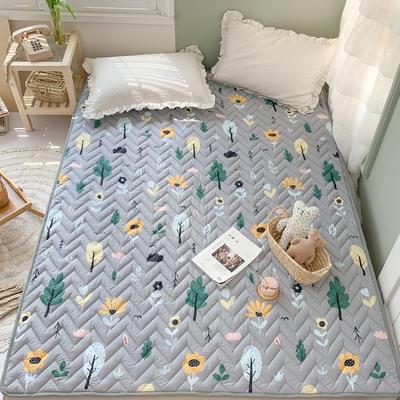 2020年新款全棉床垫(床护垫) 1.0x2米 浅色时光