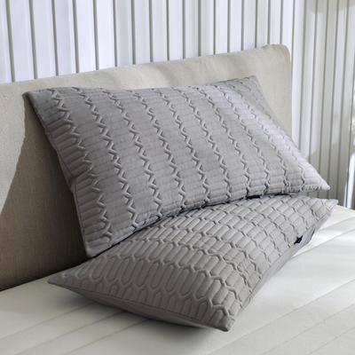 2020新款輕奢款夾棉單枕套 48cmX74cm/對 燦灰