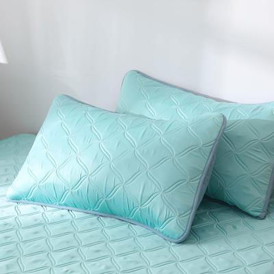 2019新款-冰感臻丝绸乳胶软席三件套 48*74枕套/一对 薄荷
