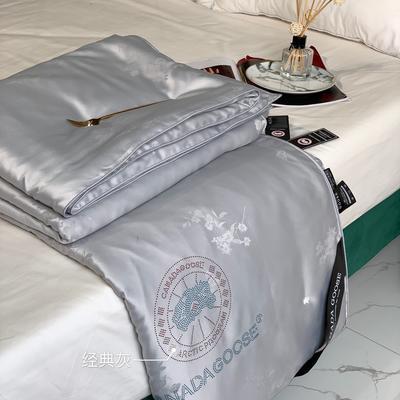 大鹅蚕丝被子被芯4斤6斤8斤加厚冬被棉被子团购礼品被微商爆款 200x230cm夏被 灰色