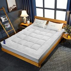 2019新款羽丝绒立体床垫 90*200cm 白色