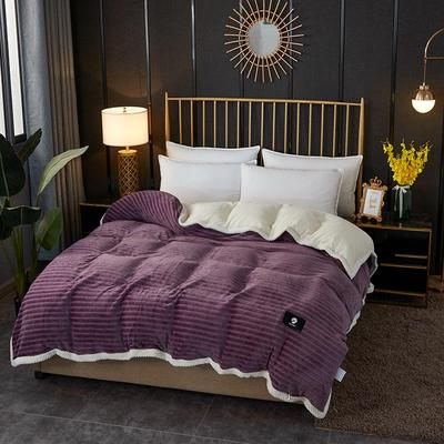 2020新款双层毛毯高克重牛奶绒贝贝绒空调毯午睡毯多功能盖毯单被套 150x200cm单被套 蜜柚时光-雪青