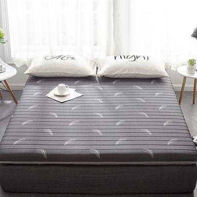 2019新款乳胶三明治床垫--大床款 120*190cm 羽毛灰床垫6公分
