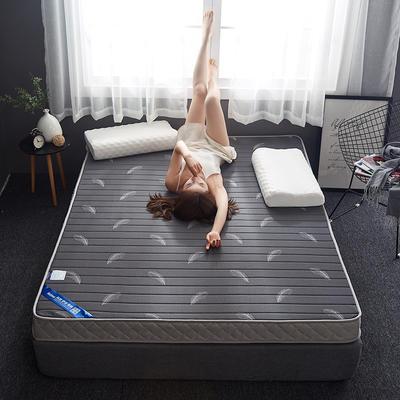 2019新款乳胶记忆海绵床垫-6公分 120*190-6cm 立体羽毛