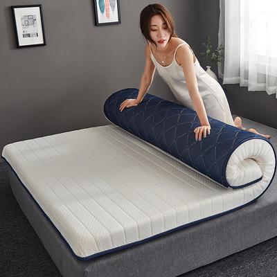 2019新款乳胶记忆海绵床垫-10公分 90*200-10cm 单边白