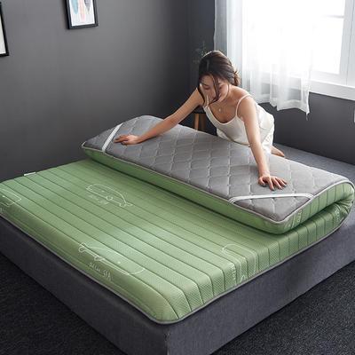 2019新款乳胶记忆海绵床垫-10公分 90*200-10cm 单边绿鲸