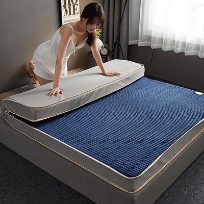 2019新款水晶绒乳胶床垫高弹记忆海绵抗压耐压床垫-10cm 90*190-10cm 水晶绒立体-宝蓝
