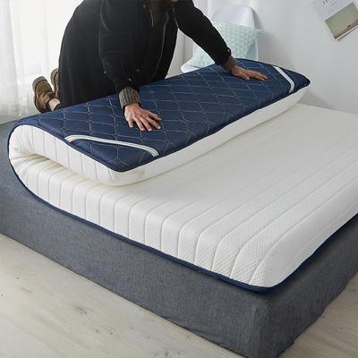 2020新款乳胶记忆慢回弹海绵床垫 0.9*2.0 单边-直线白色(10公分)