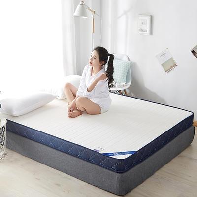 2020新款乳胶记忆慢回弹海绵床垫 0.9*2.0 立体-直线白色(6公分)