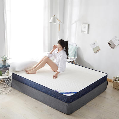 2020新款乳胶记忆慢回弹海绵床垫 0.9*2.0 立体-直线白色(10公分)