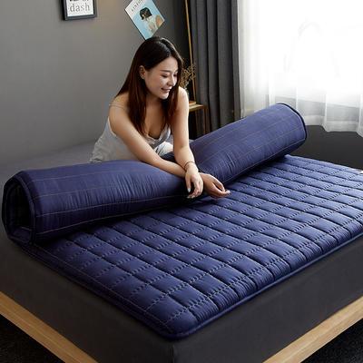 2020新款单边款磨毛压花床垫 100*200 蓝色