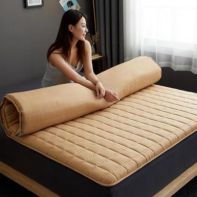 2020新款单边款磨毛压花床垫 100*200 驼色