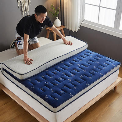 2020新款学生款针织立体透气5D床垫 80*200/80*190 蓝色
