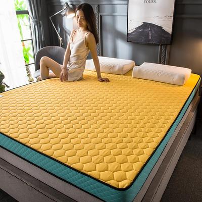2020新款四季款乳胶记忆海绵立体床垫 0.9*2.0 靓黄(5cm)
