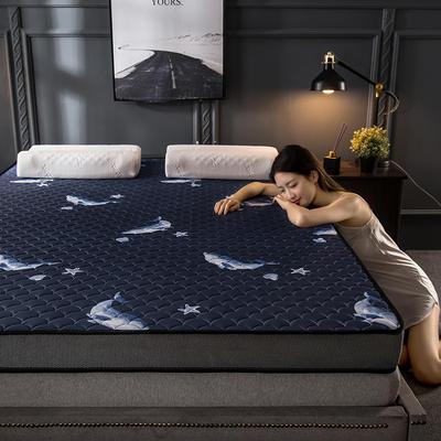 2020新款四季款乳胶记忆海绵立体床垫 0.9*2.0 蓝鲸(9cm)
