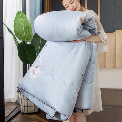 2020新款磨毛羽丝绒冬被被子被芯 150x200cm 3斤 伊人花语