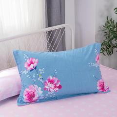 2019新款全棉单枕套 48cmX74cm/一对 爱莉丝