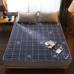 2019新款 床护垫 90*200cm 大胡子 防护垫
