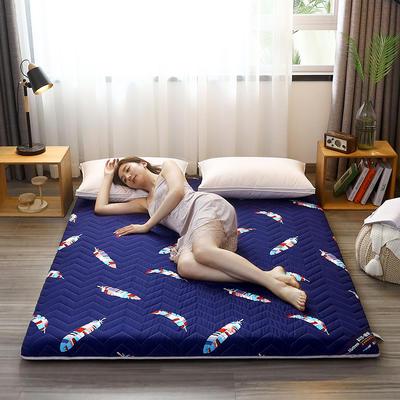 2020新款加厚磨毛印花床垫-6cm 0.9m 彩羽