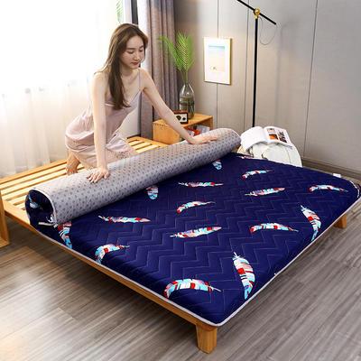 2020新款加厚磨毛印花床垫-10cm 0.9m 彩羽