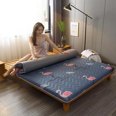 2020新款加厚磨毛印花床垫-10cm 0.9m 火鸟