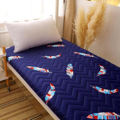 2020新款磨毛印花学生款床垫 0.9m床厚度6cm 彩羽