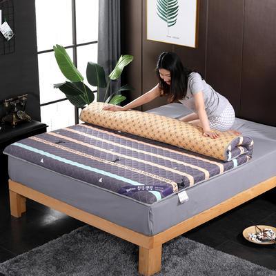 2019新款印花学生系列床垫 0.9x2.0m 光影流年