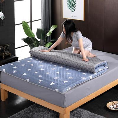 2019新款印花学生系列床垫 0.9x2.0m 卡宴