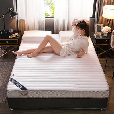 (总)伊先生宝宝绒记忆海绵乳胶床垫专业定做6cm和9cm 0.9*1.9米 立体白9cm