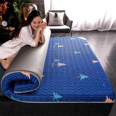 2020新款凉感丝乳胶记忆海棉床垫专业定做各种尺寸 90*190cm 单边凉感-柏树6cm