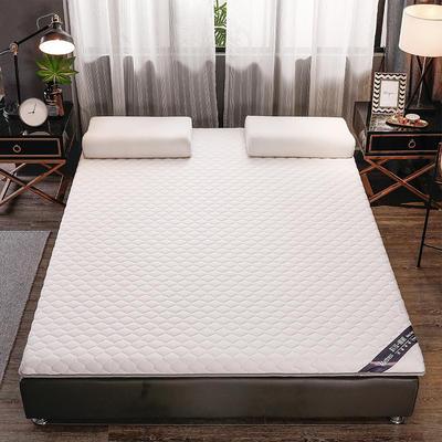 2020新款針織乳膠椰棕墊單邊款床墊-終板 60*120cm 棕墊白