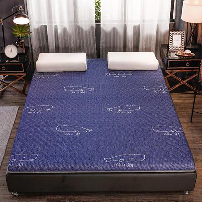2020新款針織乳膠椰棕墊單邊款床墊-終板 60*120cm 棕墊藍鯨
