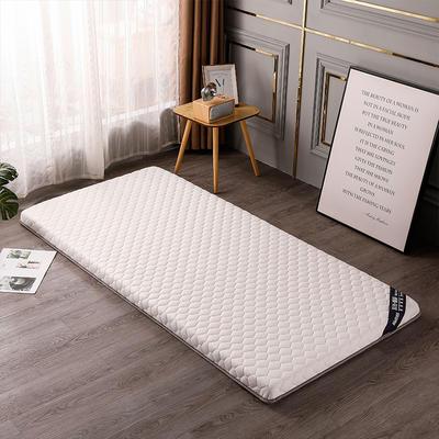 2020新款針織乳膠椰棕墊學生款床墊-終板 60*120cm 棕墊白色