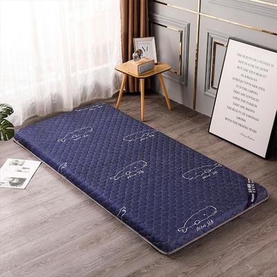 2020新款針織乳膠椰棕墊學生款床墊-終板 60*120cm 棕墊藍鯨