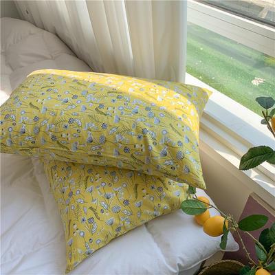 2020新款40支斜纹全棉枕套 48cmX74cm一对 花蜜
