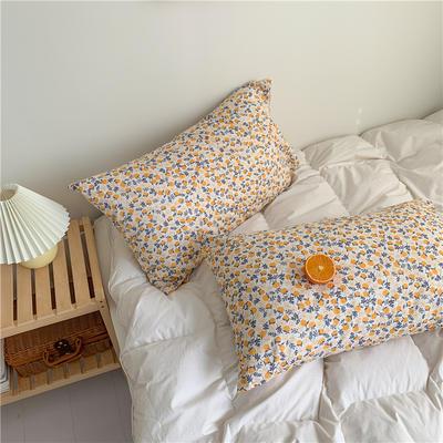 2020新款40支斜纹全棉枕套 48cmX74cm一对 水果花