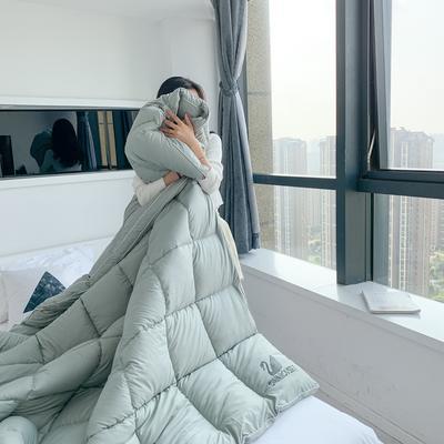 2020新款洛世奇鹅绒棉冬被被子被芯 200X230cm6斤 薄荷绿