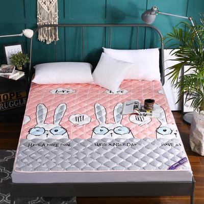 2019新款活性印染双面薄款加厚磨毛床垫 90*200 彼得兔薄款