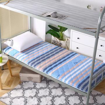 2020新款学生床垫双面活性磨毛床垫