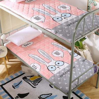 2019新款学生床垫双面活性磨毛床垫 90*190 彼得兔