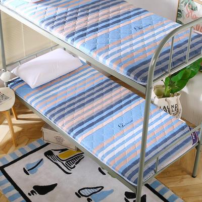 2019新款学生床垫双面活性磨毛床垫 90*190 条纹先生