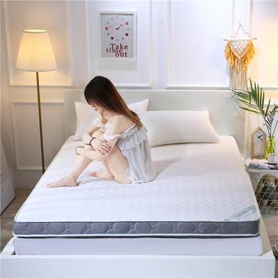 2020新款乳胶加厚立体床垫 100×200 乳胶白色(10公分)