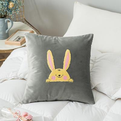 2019新款-荷兰毛巾绣抱枕(45*45/个) 皮子 可爱兔 灰色