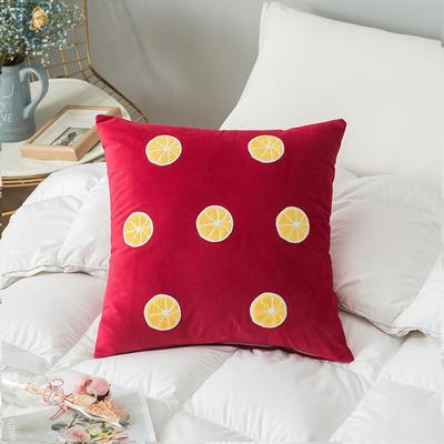 2019新款-荷兰毛巾绣抱枕(45*45/个) 皮子+芯 柠檬  红色