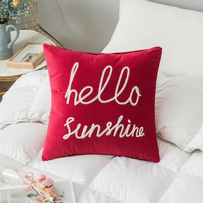 2019新款-荷兰毛巾绣抱枕(45*45/个) 皮子+芯 字母  红色