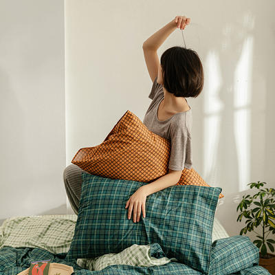 2020新款简约全棉13372系列单枕套 48cmX74cm/对 告白
