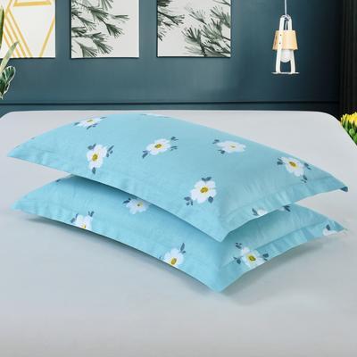 2019新款全棉12868枕套 43cmX73cm/对 雏菊花开-绿